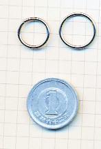 cbr-hoop2-scale(sum).jpg