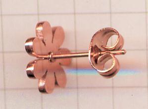 st-daisy-5(sum).jpg