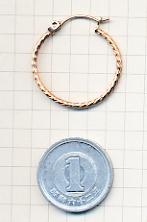 st-hoop4-scale5.jpg
